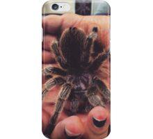Chilean Rose Tarantula iPhone Case/Skin