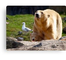 Yong life in the zoo Canvas Print