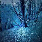 SO BLUE IN THE WOODS by leonie7