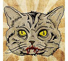 Vampire Cat Photographic Print