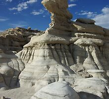 Bisti Badlands by Dawn Parker