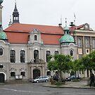 Pszczyna - Poland by JerzyS