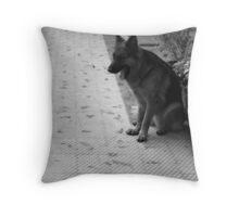 Yawning Shepherd Throw Pillow
