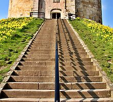 Clifford's Tower Symmetry by Mat Robinson