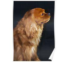 Ruby Royal Dog Poster