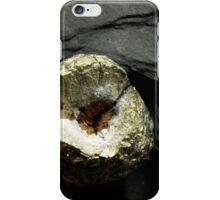 The Hidden Land – Earth In Miniature iPhone Case/Skin