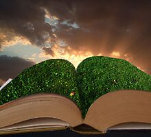Dont walk on the pages by Elliott  Egan