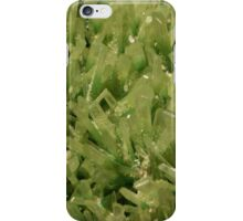 The Hidden Land - Keep Off The Grass iPhone Case/Skin