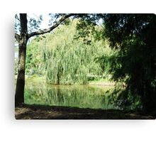 ~` Willow Lake `~ Canvas Print