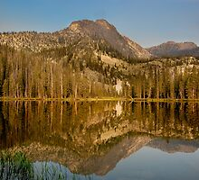 Mirror Image in the Frank Church Wilderness by Murph2010