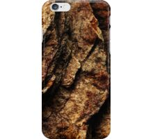 The Hidden Land - Steps To Red Oblivion iPhone Case/Skin