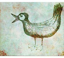 Scribbler-Bird Photographic Print