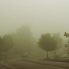 Misty by Evita