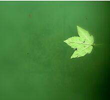 Serenity in Green by Karen  Betts
