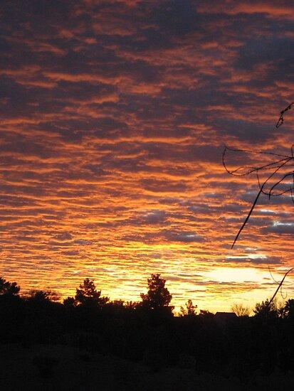 Mojave Desert Sunrise by LVFreelancer