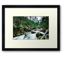 6 Years After Devastation  Framed Print