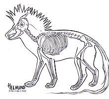 Helhund Skeleton by cheshiresmile
