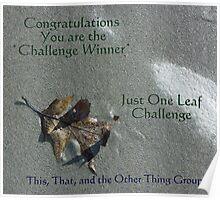 Challenge winner - Just One Leaf Poster
