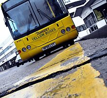 Yellow Bus Services  by brucejohnson