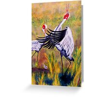 Brolga's Courtship Dance Greeting Card