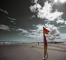 Swim between the Flags by Tam  Locke