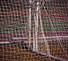 Nothing But Net by Peter Maeck