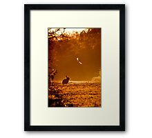 Caught in the Headlights of Dawn Framed Print