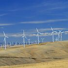 Walla Walla Windmills I by AdventureGuy