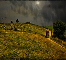 Hill Fort at Devil's Dyke  by Chris Lord