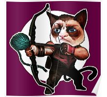 HAWKEYE CAT Poster