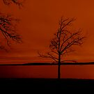 Red Sky at Morn...Sailors Take Warn by Dawn di Donato