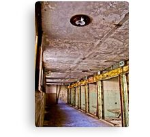Cellblock 15 Canvas Print