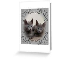 Spirit and Kiril RussianBlue von Haxtendorf Greeting Card