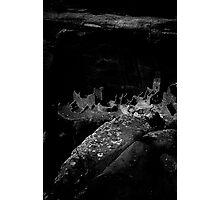 Mesa Verde, Edged into the Light Photographic Print