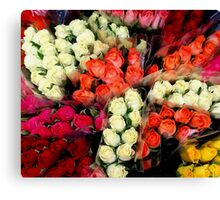 Flowers from Jersey... Canvas Print