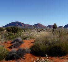 Olgas Northern Territory by Vicki73