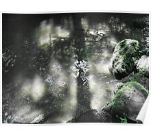 Tree Shadow of Fate Poster