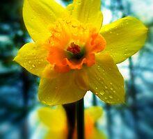 Let The Rain Bring Us The Sunshine by Tisha Clinkenbeard