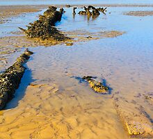 Remains of The Hero at Minnis Bay by Geoff Carpenter