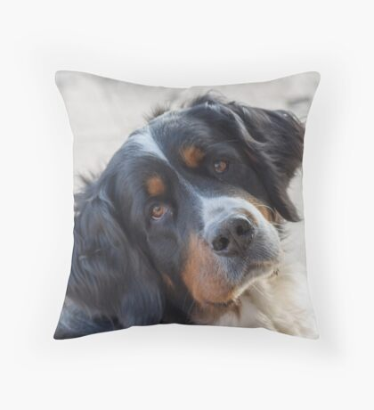 cute dog Throw Pillow