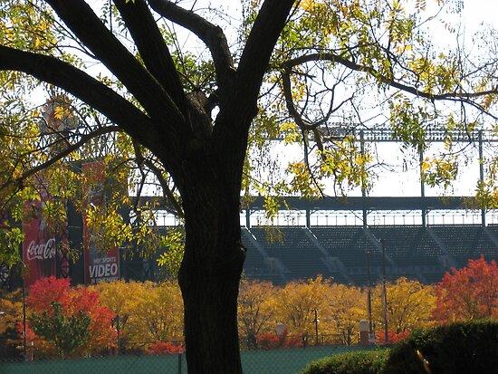 Autumn at Camden Yards by Judi FitzPatrick