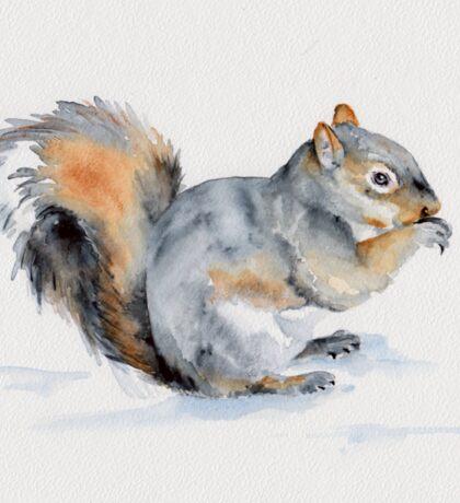Squirrel's winter snacktime Sticker
