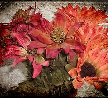 Petals © by Dawn M. Becker