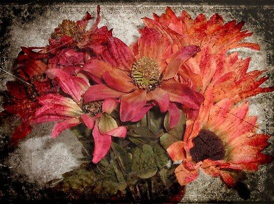 Petals © by Dawn M. Becker