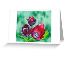 Wine-colored Tulips Greeting Card