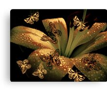 Lily & Butterflies. Canvas Print