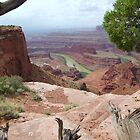 Dead Horse Point Overlook by Dawn Parker