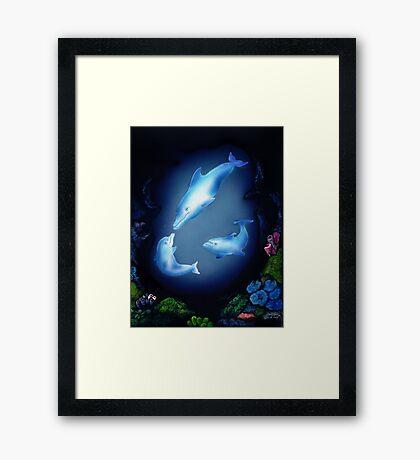 Dolphin Cove Framed Print