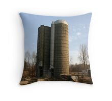 old silos Throw Pillow