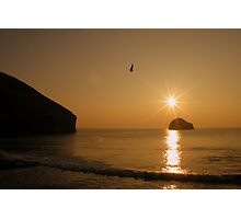 Cornwall: The Gull & Gull Rock Photographic Print